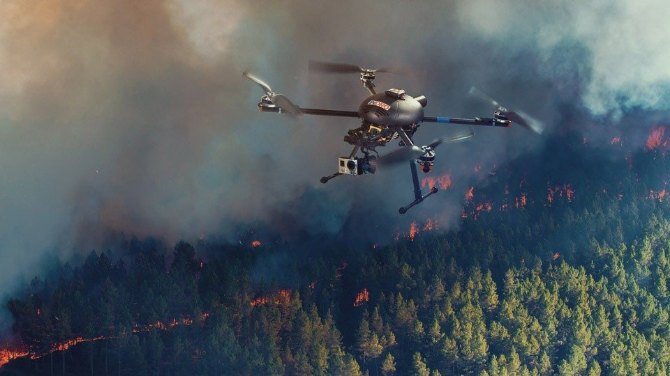 Drone flying above the forest set up on fire.